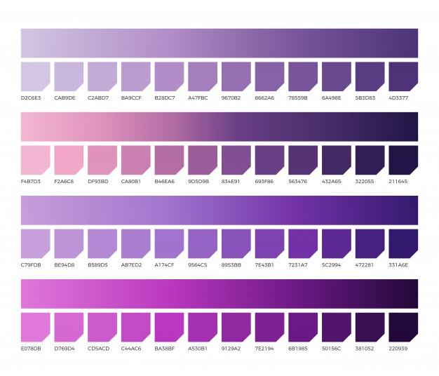 paleta colores morados