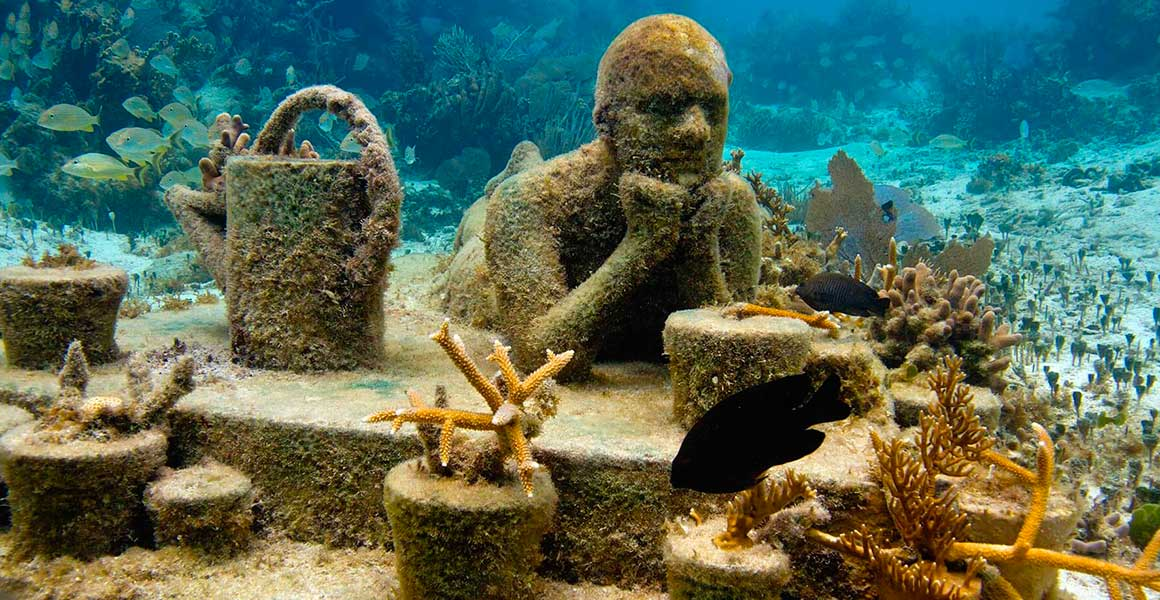 musa lugares para visitar en cancun