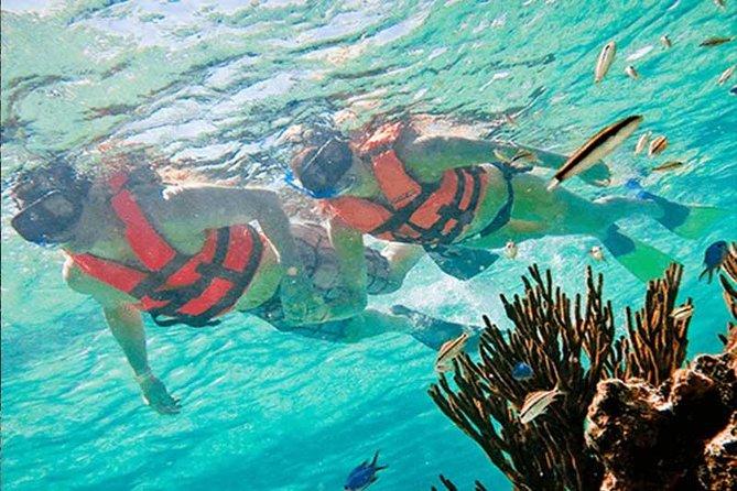 Snorkel en puerto morelos