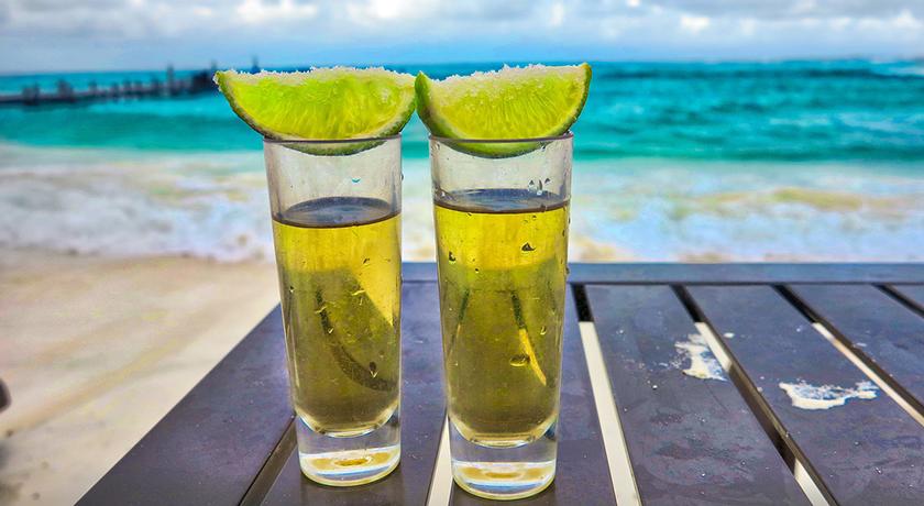 Tequila bebidas tipicas de mexico