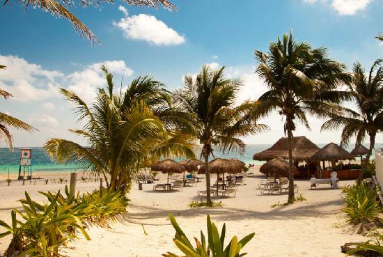 que hacer y ver en Puerto morelos - club de playas