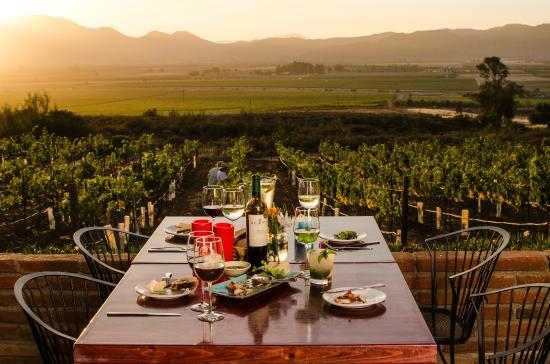 cena romantica en el valle de guadalupe