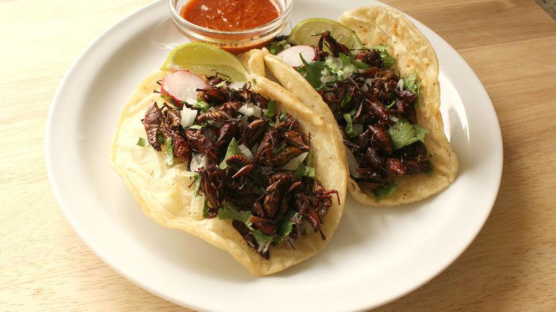 Tacos de chapulines al ajillo