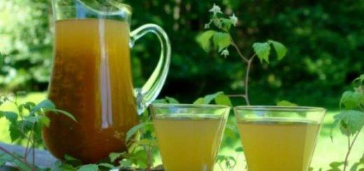Bebidas Típicas de Morelos