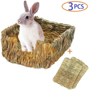 cama de cesped para conejos