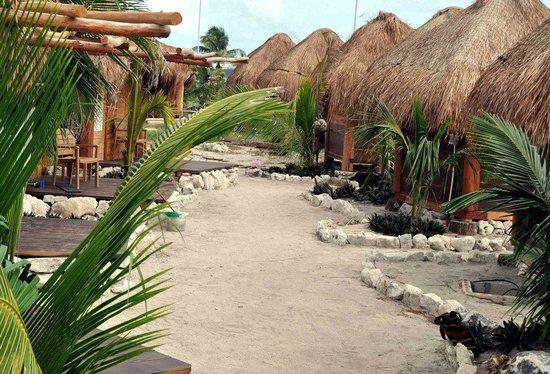 cabañas mahahual actividades cancun y riviera maya