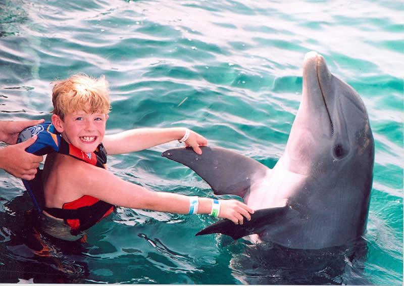 nado con delfines para niños en cancun