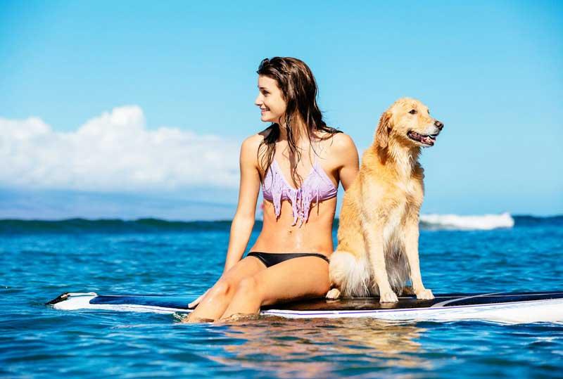 Atelier Playa Mujeres-All Inclusive Resort mejores hoteles para mascotas