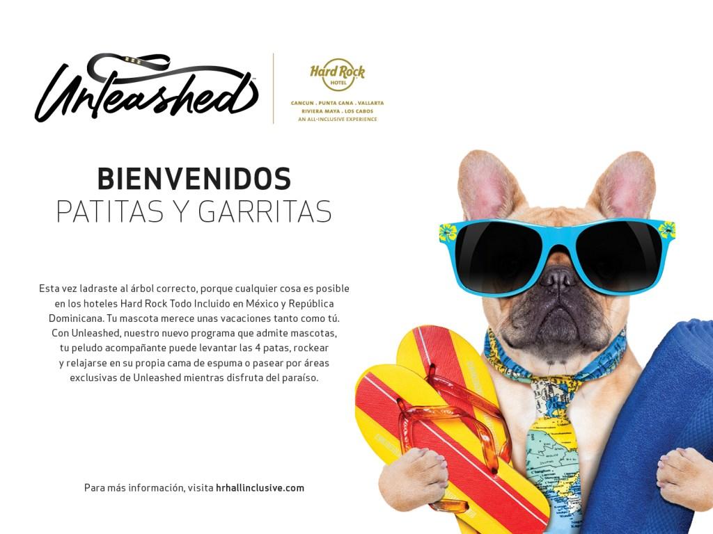 Hard Rock Hotel Cancun mejores hoteles que aceptan mascotas en cancun