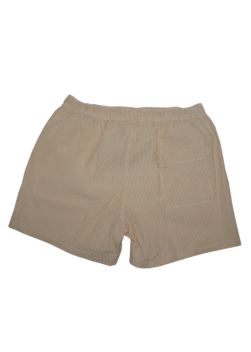 Loro Piana Swim Shorts