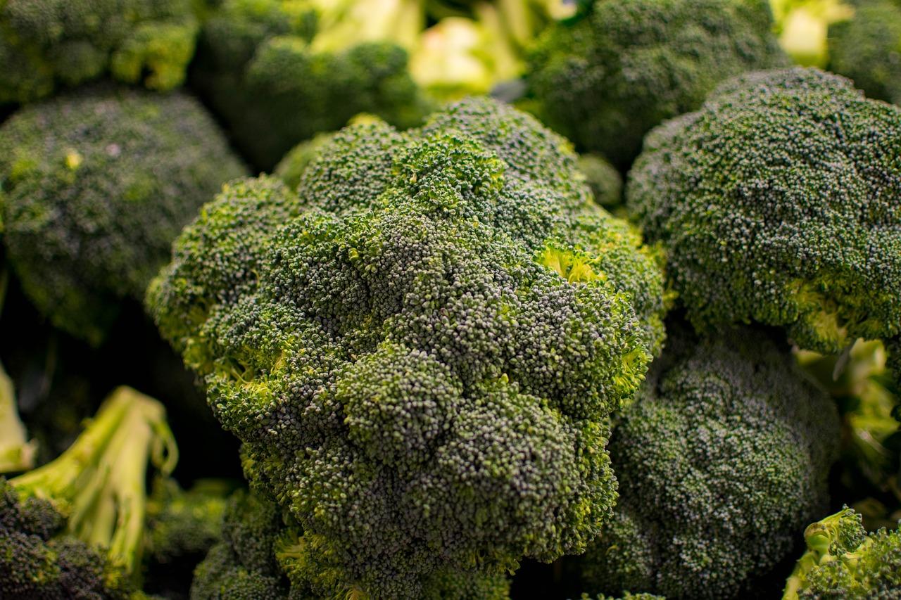 Sicilian broccoli
