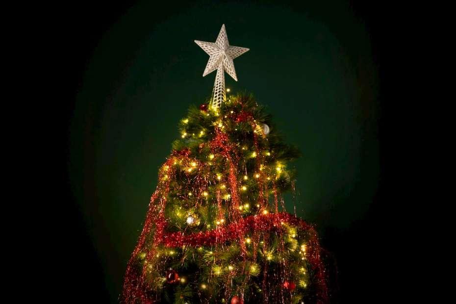 lugares para comprar el árbol de navidad en guatemala