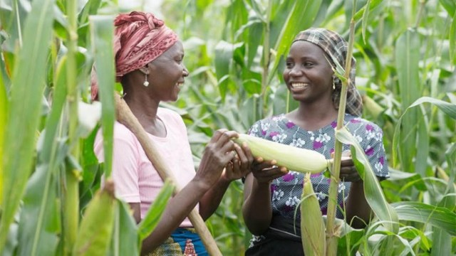 Overcoming Barriers for Women in Agriculture