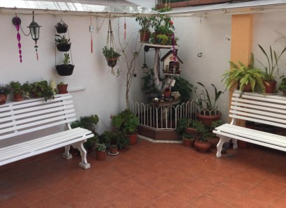 The garden at Cuenca Dental Care.