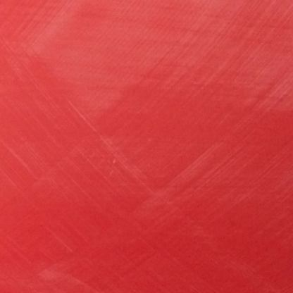 Red Coral-413