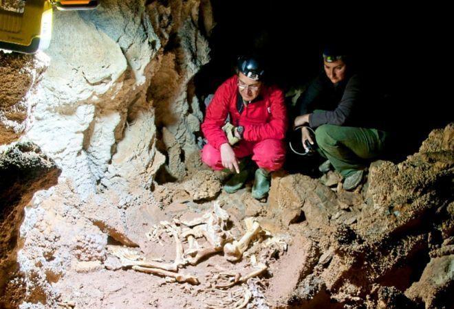 Investigadores junto al esqueleto de león de las cavernas