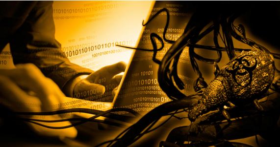 computer parasites