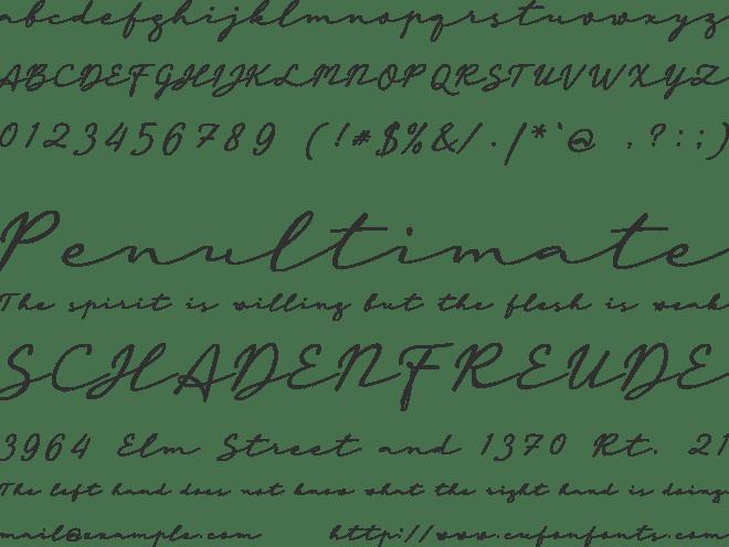 Download a Auto Signature Font : Download Free for Desktop & Webfont