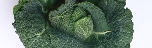 La verdura de hoja mantiene el sistema endócrino sano