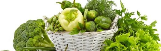 verdura de hoja verde clorofila