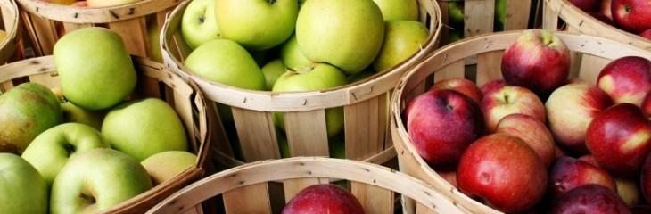 manzanas-variadas-cestos-picar-entre-horas