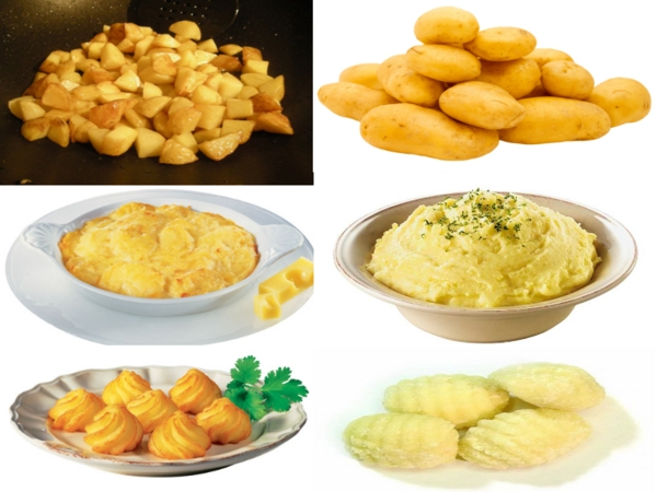 Cuisiner les pommes de terre nouvelles cuisines et astuces d 39 un vrai cuisinier - Cuisiner les pommes de terre ...