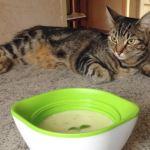 soupe courgettes chavroux 3 - Soupe de courgettes au Chavroux