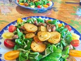 salade aiguillettes canard 1 - Salade Sarladaise