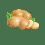 pomme de terre - Dossier : Fruits et légumes de saison au mois d'août