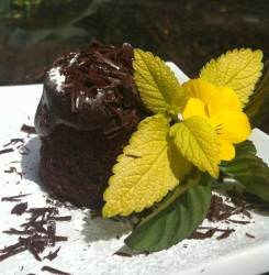 chocolate chiffon with organic mint ganache