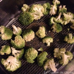 salade_quinoa_saumon_brocolis01