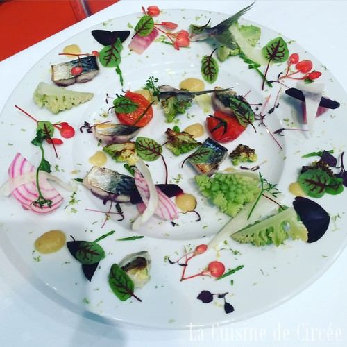 food_in_sud_2016_07