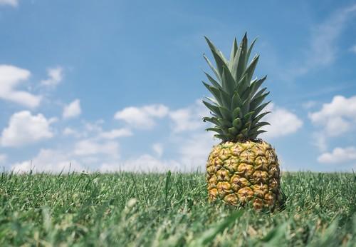 L'ananas – Fruit du dimanche 05/11/2017