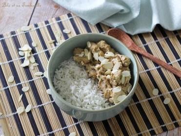 Poulet aux amandes & curry (3)