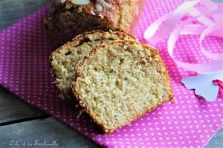Gâteau au yaourt & pralin (5)
