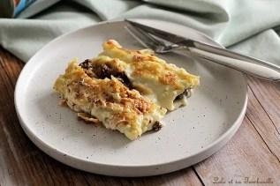 Cannellonis à la viande hachée (5)