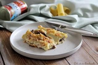 Cannellonis à la viande hachée (7)