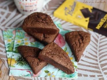 Cake au chocolat (3)