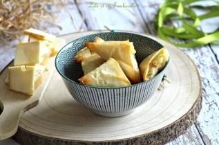 Samossas de poireaux à la raclette (2)