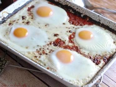 Tomates aux oeufs 2(11)