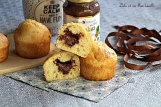 Muffins au lait de coco & pâte à tartiner (5)