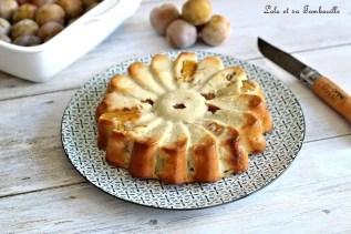 Clafoutis aux prunes (12)