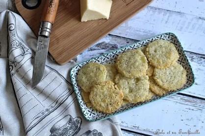 Sablés au cantal & graines de pavot (5)