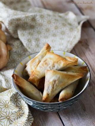 Samossas de boeuf & mozzarella (3)