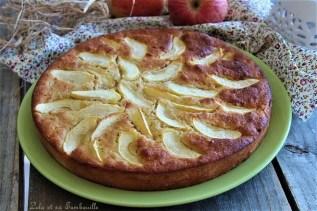 Moelleux aux pommes & cannelle (2)