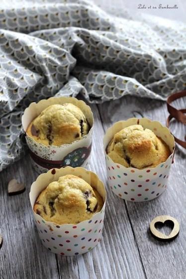 Muffins marbrés (8)