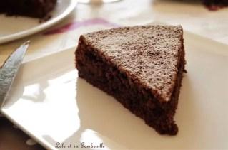Caprese al cioccolato (5)
