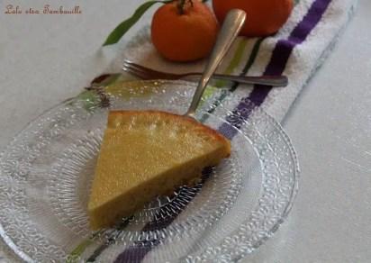 Gâtau à la clémentine (1)