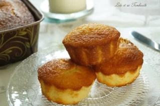 Gâteaux fondants à la noix de coco (4)