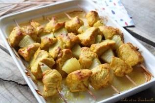 Brochettes de dinde aux épices (4)